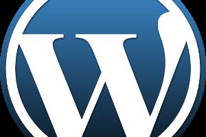 wordpress-300x200