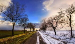 Winter-Spring_Wallpaper_niopo1-679x400